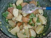 Fresh Potato Salad Recipe