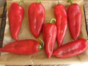 How To Store Roasted Red Pepper In The Freezer