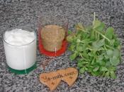 Bulgurlu Semizotu Çorbası