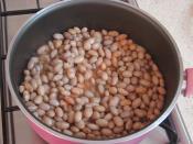 Zeytinyağlı Taze Barbunya Yemeği