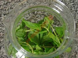 Mint Lemon Tea Recipe