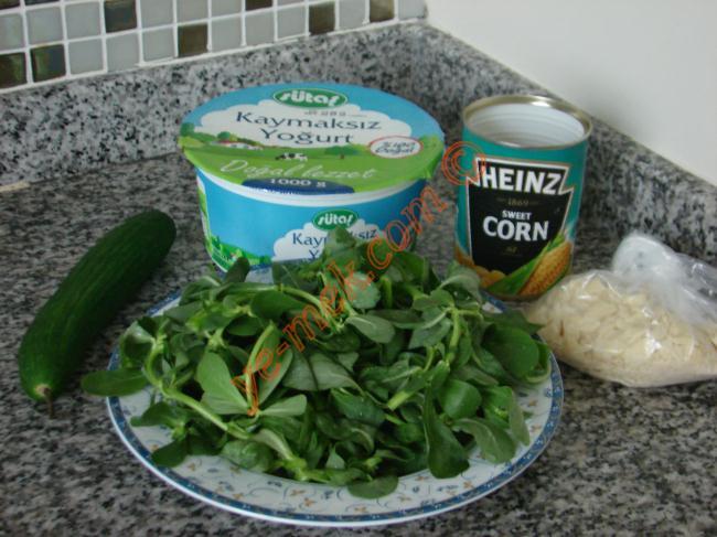 Yoğurtlu Semizotu Salatası Malzemeleri