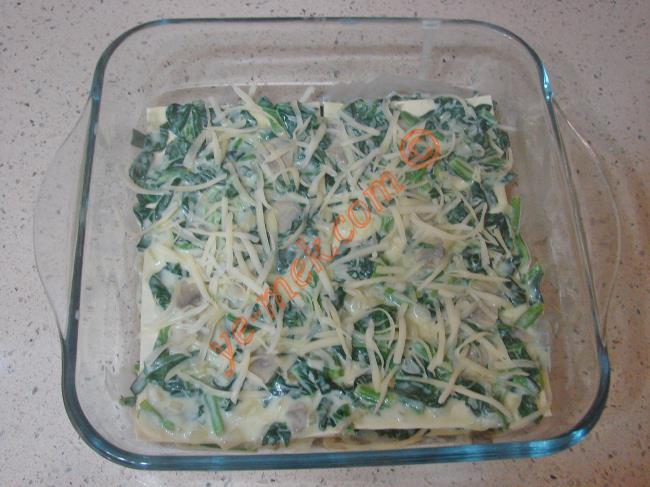Daha sonra küçük kare borcamın tabanına biraz ıspanaklı karışımdan koyup, yayın. 2 adet lazanya yaprağını sosun üzerine yanyana olacak şekilde yerleştirin.