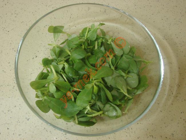 Kolay Yoğurtlu Semizotu Salatası - Yapılışı (2/8)